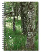 Soft Trees Spiral Notebook