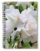 Soft White Azaleas Spiral Notebook