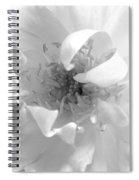 Soft White Spiral Notebook