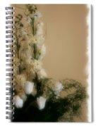 Soft Whites Spiral Notebook
