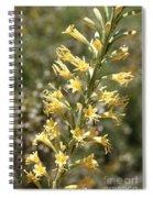 Soft Yellow Desert Flowers Spiral Notebook
