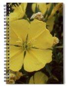 Soft Yellow Flowers Spiral Notebook