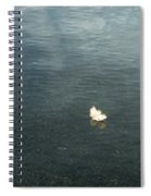 Softly Floating Plume Spiral Notebook