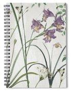 Softly Purple Crocus Spiral Notebook