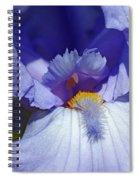 Softly Purple Spiral Notebook