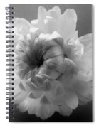Softly Romantic Spiral Notebook