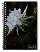 Softly Spoken  Spiral Notebook