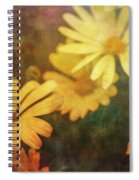 Softly Yellow 9122 Idp_2 Spiral Notebook