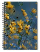 Softly Yellow And Blue Spiral Notebook