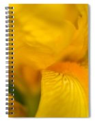 Softly Yellow Spiral Notebook