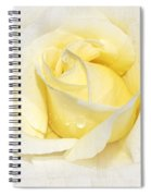 Softly Yellow Rose Spiral Notebook