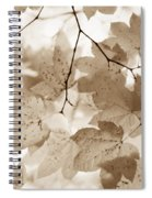 Softness Of Brown Maple Leaves Spiral Notebook