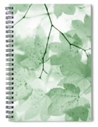 Softness Of Green Leaves Spiral Notebook