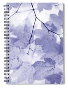 Softness Of Lavender Leaves Spiral Notebook