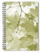 Softness Of Olive Green Maple Leaves Spiral Notebook