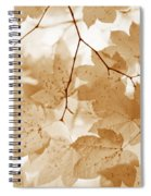 Softness Of Rusty Brown Leaves Spiral Notebook