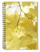 Softness Of Yellow Leaves Spiral Notebook