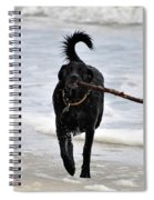 Soggy Stick Spiral Notebook