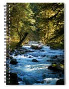 Sol Duc River Above The Falls - Washington Spiral Notebook