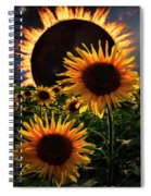 Solar Corona Over The Sunflowers Spiral Notebook