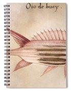 Soldier-fish, 1585 Spiral Notebook