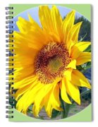 Solid Sunshine Spiral Notebook