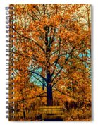 Solitary Fall Spiral Notebook