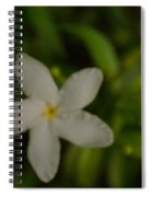 Solitary Flower Spiral Notebook