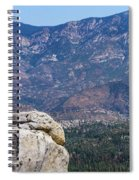Solitary Pine On Promontory Spiral Notebook