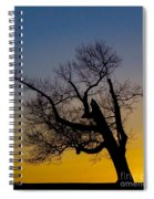 Solitary Tree At Sunset Spiral Notebook