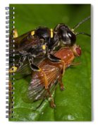 Solitary Wasp Spiral Notebook