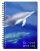 Solitude Spiral Notebook