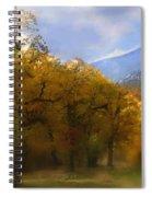 Solitude In Gold Spiral Notebook