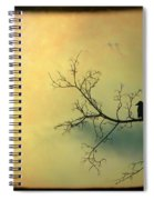 Solitude Mood Spiral Notebook