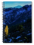 Solo Larch 2 Spiral Notebook