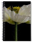 Marilyn Monroe's Dress Spiral Notebook