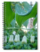 Solomans Seal In Spring Spiral Notebook