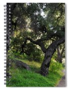Solstice Canyon Live Oak Trail Spiral Notebook
