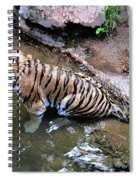 Some Cats Like Water Spiral Notebook