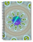 Some Colors On Your Wall Spiral Notebook