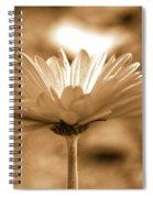 Some Shine Spiral Notebook