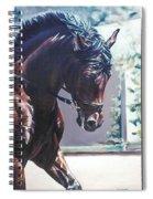 Somerset Spiral Notebook