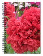 Somniferum Poppy 1 Spiral Notebook