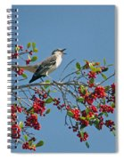 Song Of The Mockingbird Spiral Notebook