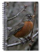 Songbird Evening Spiral Notebook