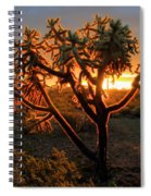 Sonoran Desert Sunrise 2 Spiral Notebook