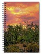 Sonoran Desert Sunset H44 Spiral Notebook