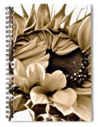 Sophisticated Spiral Notebook