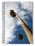 Sorrento Date Palms Spiral Notebook