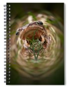 Sorry Said The Frog 1 Spiral Notebook